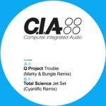 Q Project - Trouble (Marky & Bungle Remix)