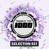 Trance Top 1000 Selection, Vol. 31