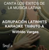 Instrumental Karaoke Series: Wilfrido Vargas (Karaoke Version)