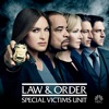 Law & Order: SVU (Special Victims Unit), Season 17 wiki, synopsis