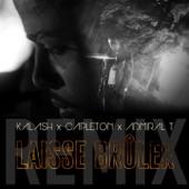 Laisse brûler (feat. Capleton & Admiral T) [Remix] - Single