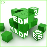 EDM Madness, Vol. 2