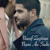 Nami Aa Sadri Nassif Zeytoun - Nassif Zeytoun
