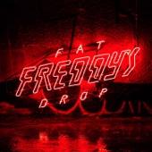 Fat Freddy's Drop - Wairunga Blues