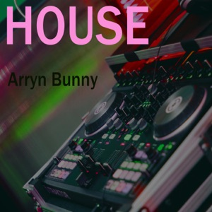 Arryn Bunny - Electro-House