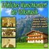 Fröhliches Wunschkonzert der Volksmusik - Various Artists