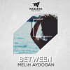 Melih Aydogan - Between artwork