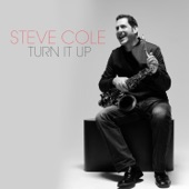 Steve Cole - Workhouse