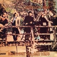 Hark! The Village Wait by Steeleye Span on Apple Music