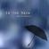 In the Rain - David Russell