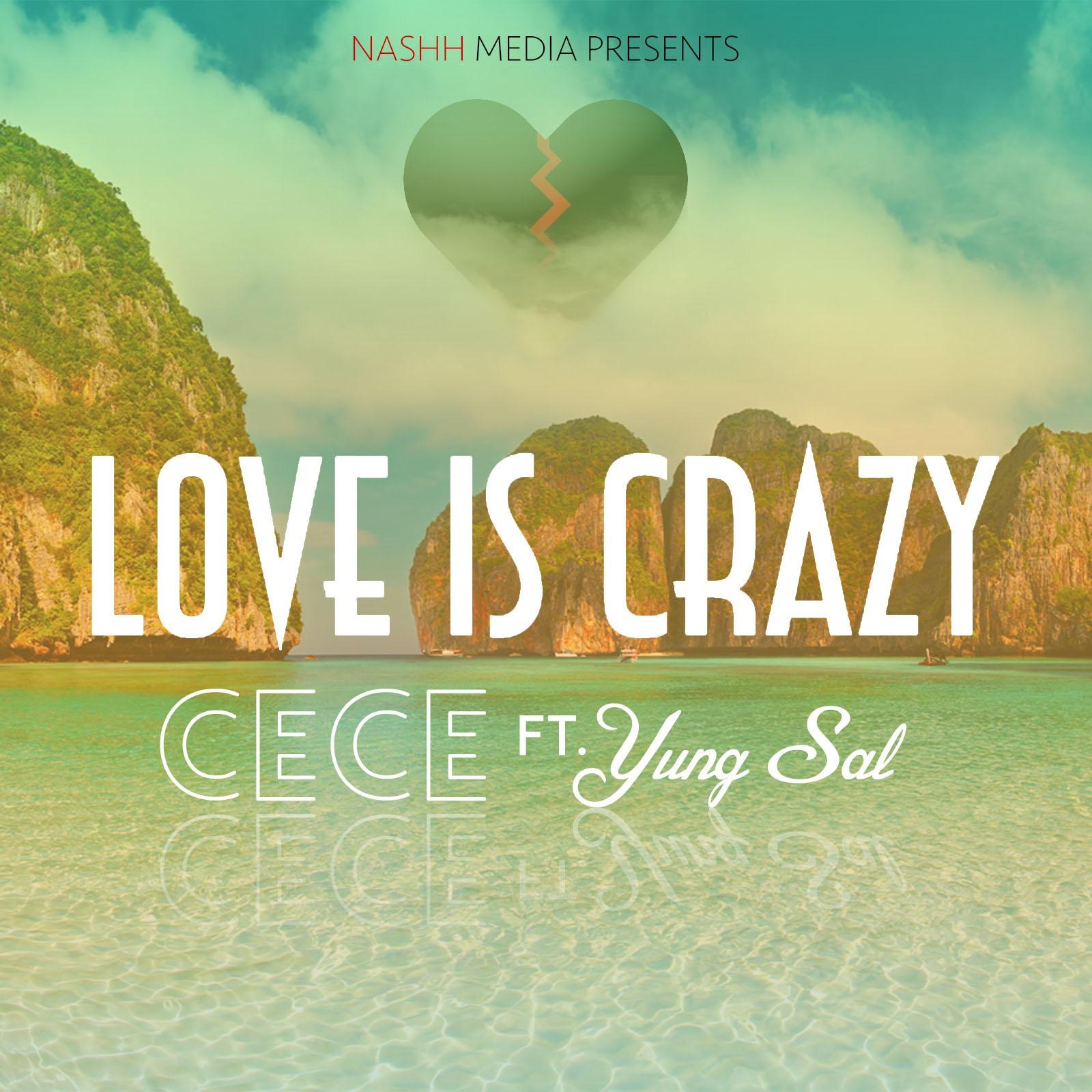 Love Is Crazy (feat. YungSal) - Single