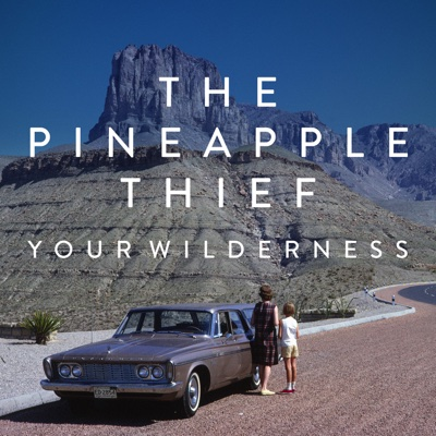 Your Wilderness - The Pineapple Thief album