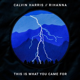 This Is What You Came For Feat Rihanna