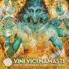 Vini Vici - Namaste (Static Movement & Off Limits Remix) artwork