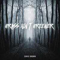 Grass Ain't Greener - Single - Chris Brown