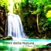 Suoni della Natura in Musica Relax - Musica Rilassante con i Suoni della Natura - Musica Rilassante Relax & Musicoterapia