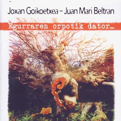 Egurraren Orpotik Dator - Joxan Goikoetxea