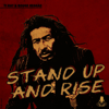 Ti Rat & Rouge Reggae - Stand Up and Rise artwork