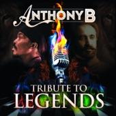 Anthony B - Burn Iniquity