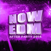 Now EDM After Party 2014