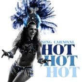 Hot Hot Hot (Dio's Refreshed Radio Mix) artwork