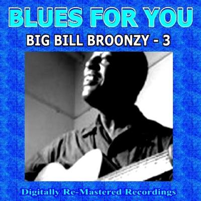 Blues For You - Big Bill Broonzy - 3 - Big Bill Broonzy