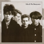 Echo & The Bunnymen - Lips Like Sugar