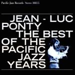 Jean-Luc Ponty - Pebble Beach Walk