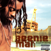 Beenie Man - Feel It Boy artwork