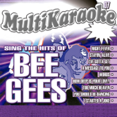 Sing The Hits Of Bee Gees