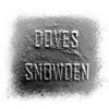 Snowden - Single ジャケット写真
