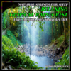 Sounds of Nature for Sleep: Tranquil Birdsong with Relaxing Music (Bonus Track) - Jamie Llewellyn