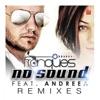 No Sound (Remixes) [feat. Andreea], Franques