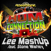 Hum Connection (Radio Mix) [feat. Stone Warley]