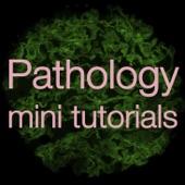 Pathology mini tutorials home | facebook.