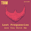 Are You With Me (Extended Mix) - Lost Frequencies