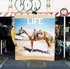 LIFE - Single ジャケット画像