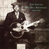 Big Bill Broonzy - Saturday Night Rub