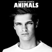 descargar bajar mp3 Martin Garrix Animals