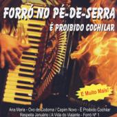Forró Pé De Serra: É Proibido Cochilar