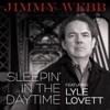 Sleepin In the Daytime feat Lyle Lovett Single