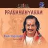 Pranamamyaham