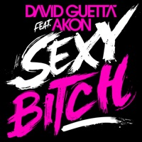 David Guetta & Akon - Sexy Bitch