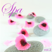Spa Music vol.2: Soothing Music Relaxing Sounds, Relaxation Meditation Peaceful Music with Sounds of Nature for Massage & Relax, Reiki & Yoga