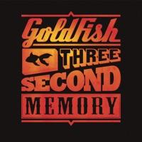 GoldFish - One Million Views (feat. John Mani) [Bakermat Remix]