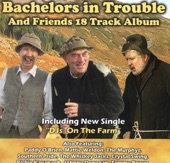 bachelors in trouble Is there anybody out there