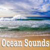 Ocean With Birds - Nature Sounds