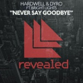 Never Say Goodbye (feat. Bright Lights) - Single