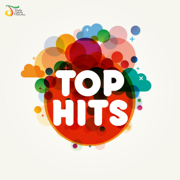 Top Hits - Various Artists - Various Artists