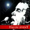 Haluk Levent - Elfida artwork